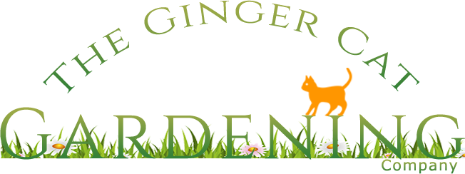 Exceptionnel The Ginger Cat Gardening Company